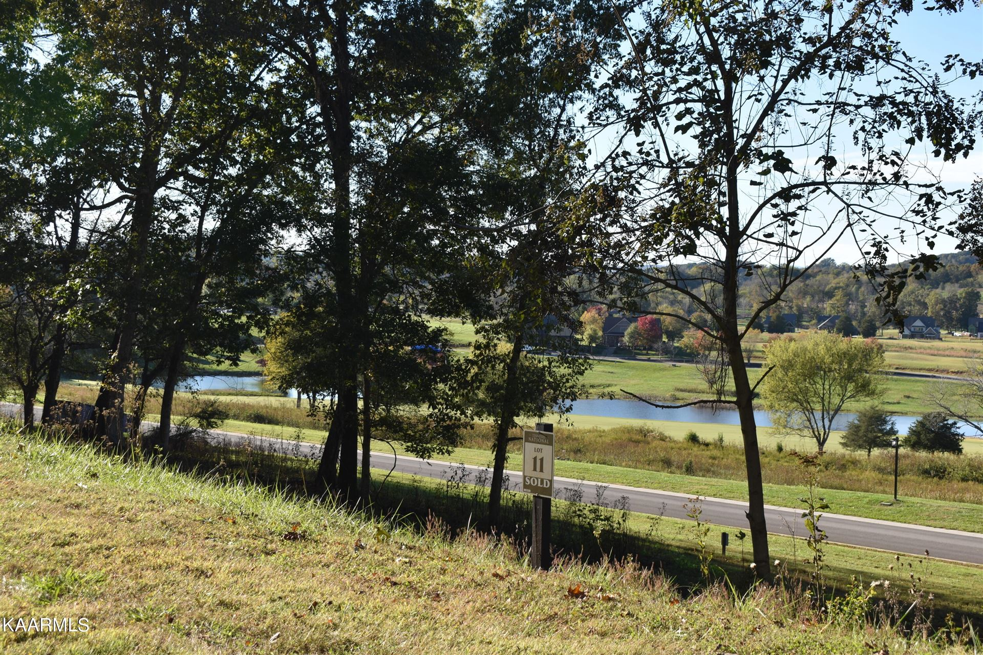 Photo of 1031 Black Cove Lane, Loudon, TN 37774 (MLS # 1171805)