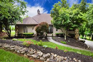 Photo of 12321 River Oaks Point, Knoxville, TN 37922 (MLS # 1083809)