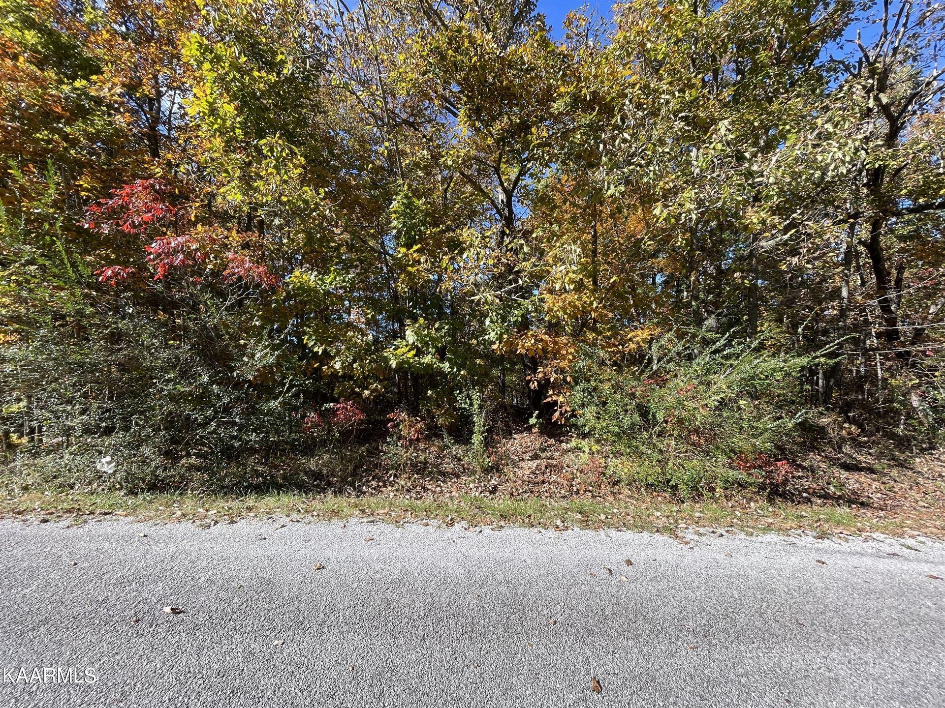 Photo of 292 Kingsdown Drive, Crossville, TN 38558 (MLS # 1171816)