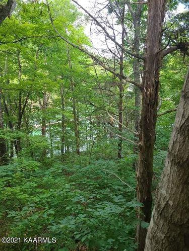 Photo of 960 Cool Branch Rd, Maynardville, TN 37807 (MLS # 1170819)