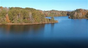 Tiny photo for 123 Clearwater Cove Drive, Madisonville, TN 37354 (MLS # 1100822)