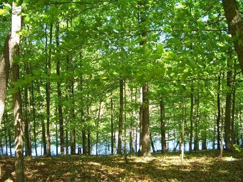 Photo of Lot 08 Dogwood Cove Drive, Spring City, TN 37381 (MLS # 1112823)