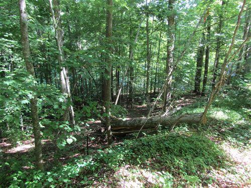 Tiny photo for Lot 11 Yoakum Hollow Rd, Jacksboro, TN 37757 (MLS # 1121826)