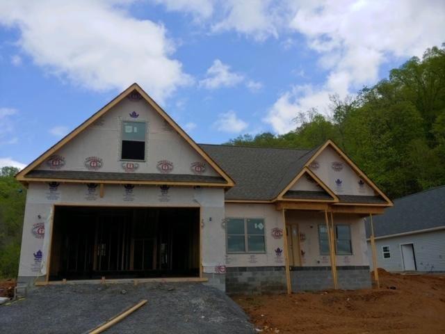 Photo of 102 Raelyn Ridge Way, Clinton, TN 37716 (MLS # 1113827)