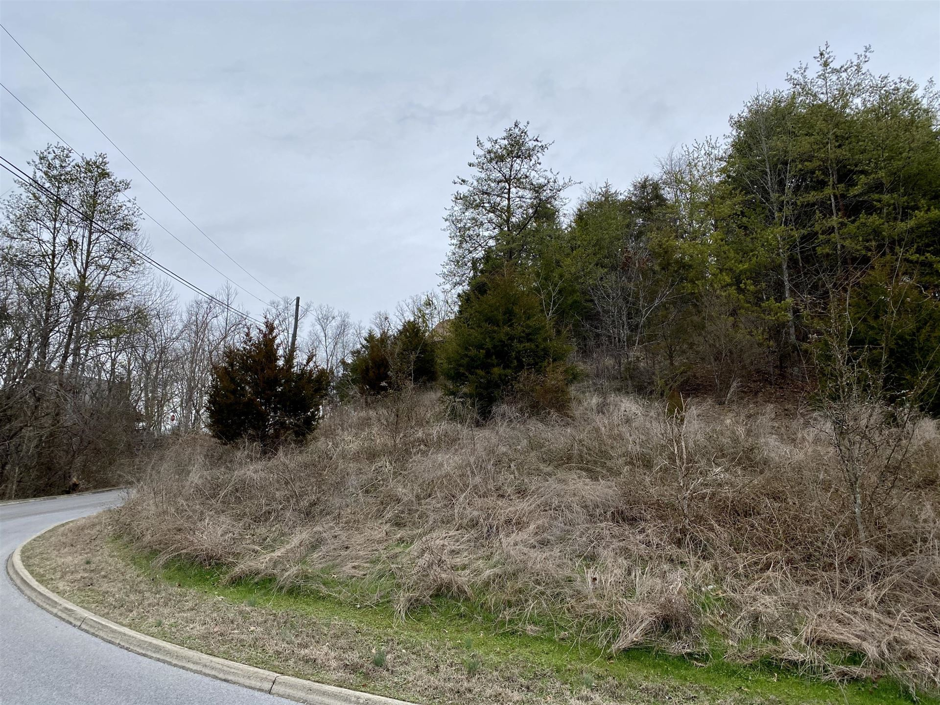 Photo of Bald Eagle Drive, Sevierville, TN 37876 (MLS # 1105834)