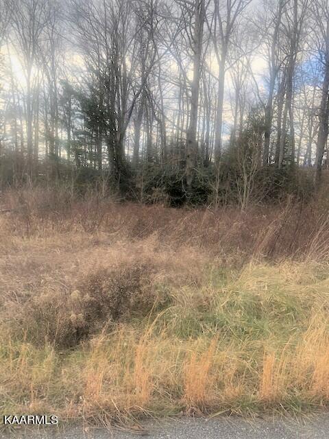 Photo of Lot 47 Green Meadow Drive, Winfield, TN 37892 (MLS # 1171836)