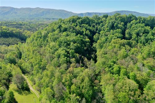 Photo of Reagan Mill Rd, Maryville, TN 37803 (MLS # 1151841)