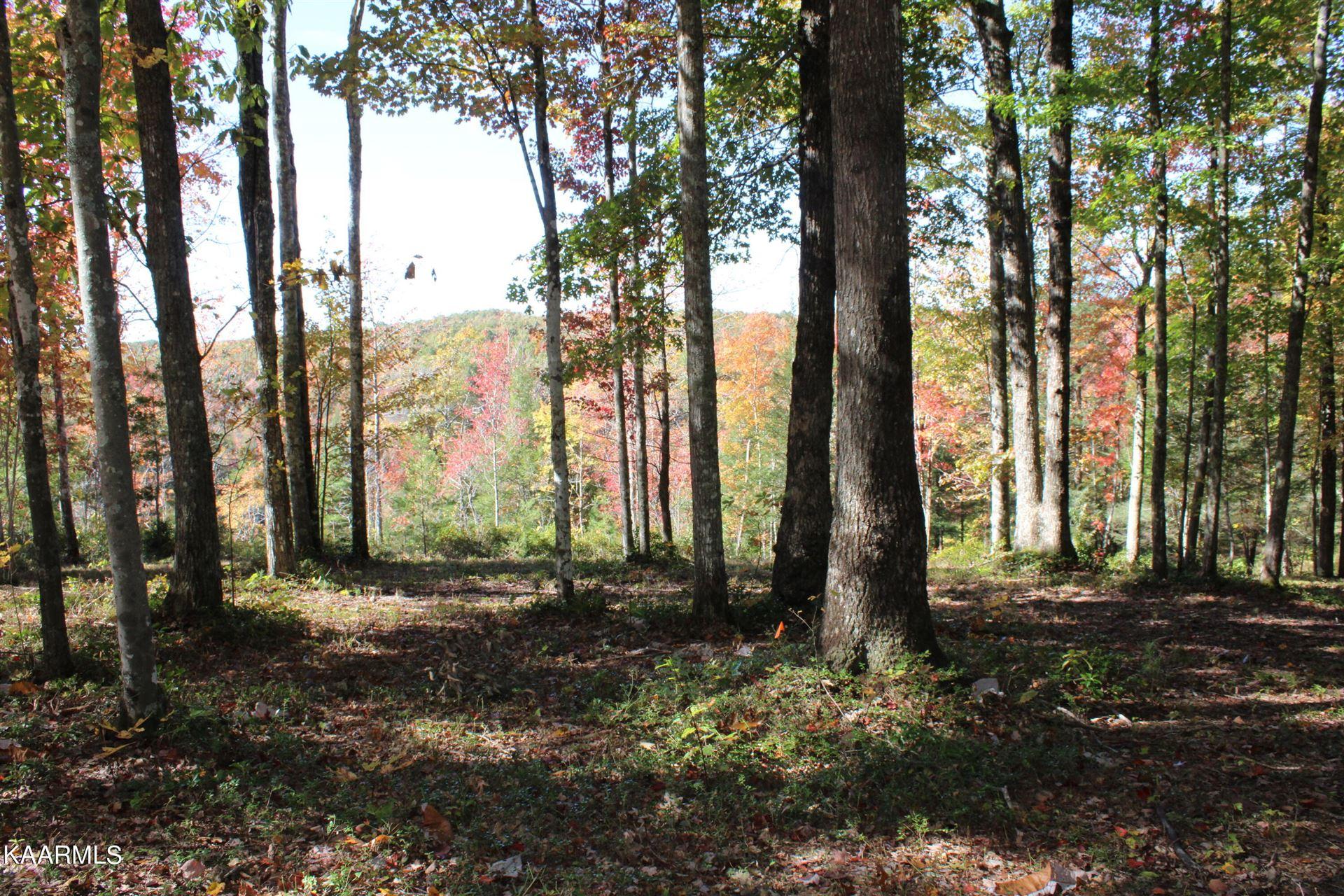 Photo of Big Leaf Cove, Jamestown, TN 38556 (MLS # 1171844)