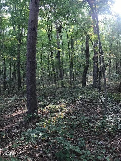 Photo of Lot 6 Mountain View Road, Benton, TN 37307 (MLS # 1171846)