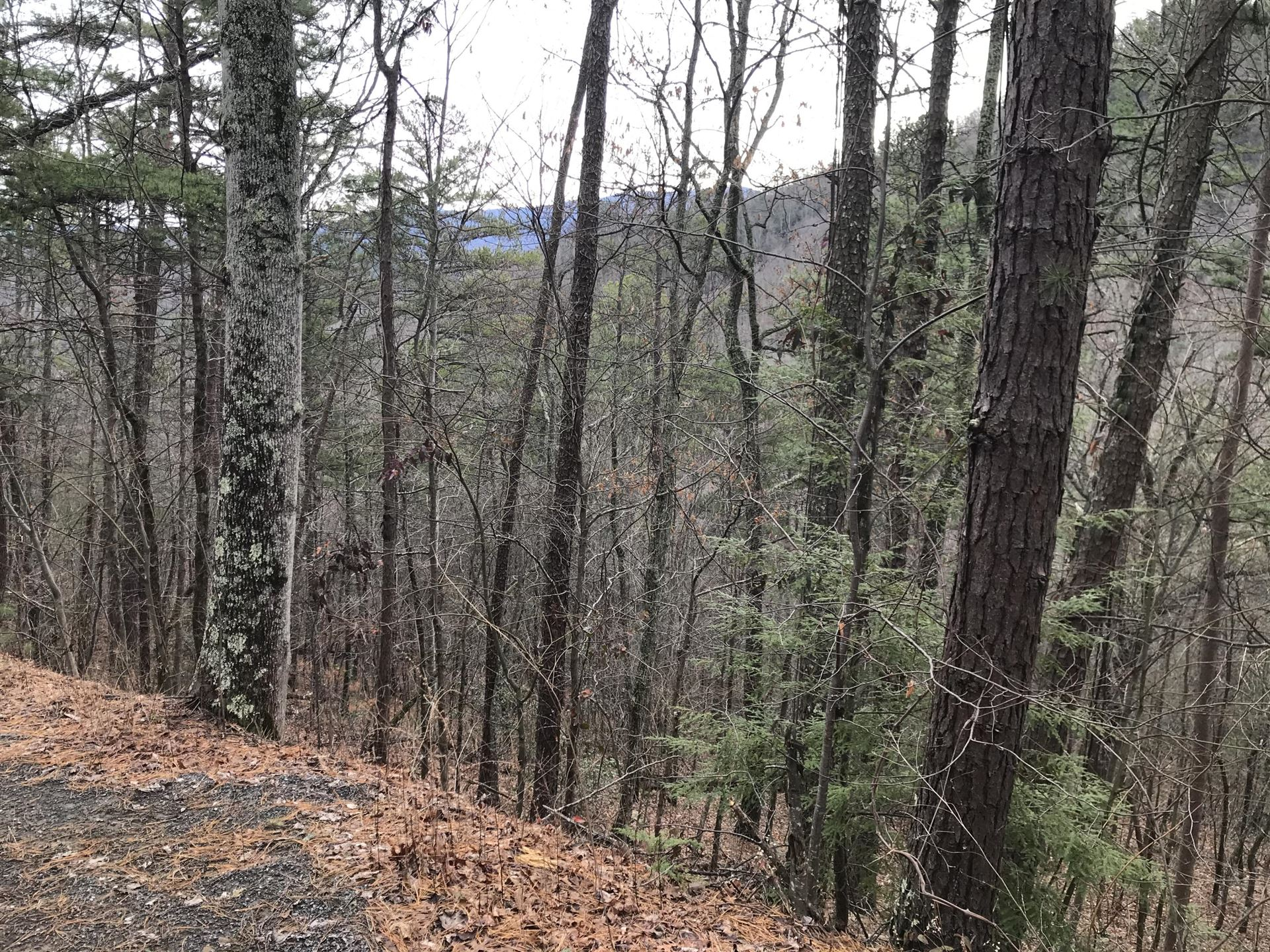 Photo of Overholt Tr, Sevierville, TN 37862 (MLS # 1140847)