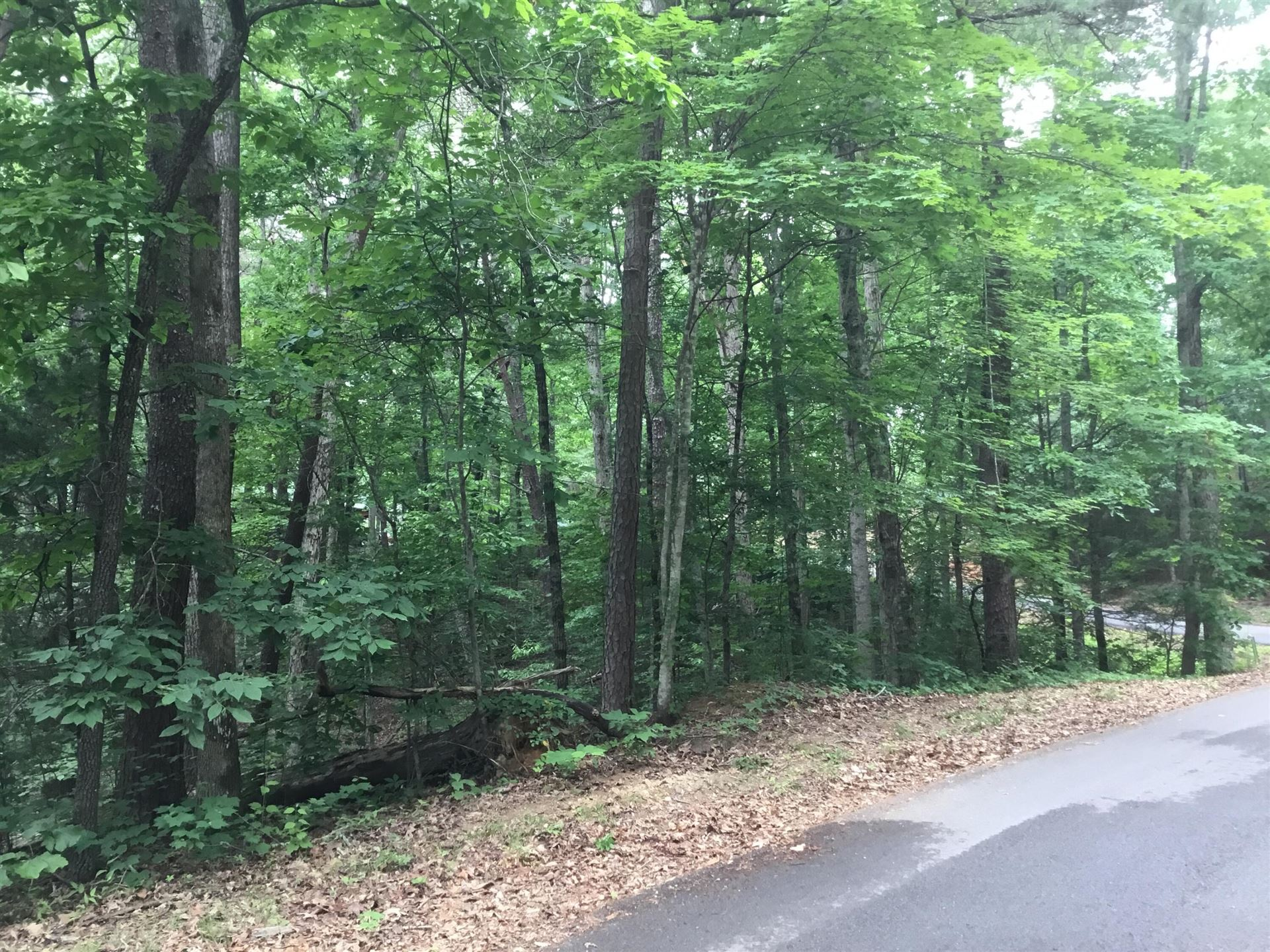 Photo of S Mountain View Rd, Sevierville, TN 37876 (MLS # 1156863)