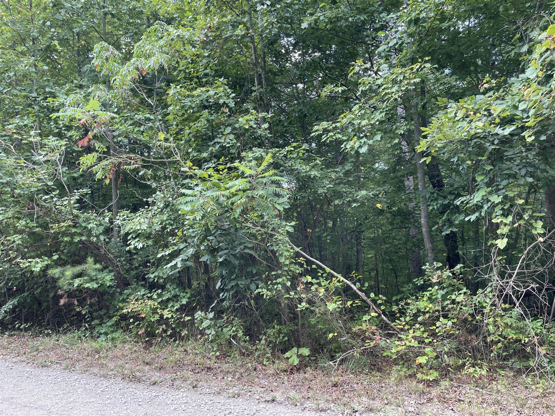 Photo of CALICO Lane, Crawford, TN 38554 (MLS # 1167863)