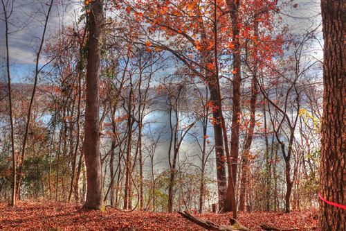 Photo of Lot 172 E Shore Drive, Rockwood, TN 37854 (MLS # 1138870)