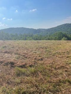 Photo of 123 Pineberry East Rd, Oak Ridge, TN 37830 (MLS # 1161871)