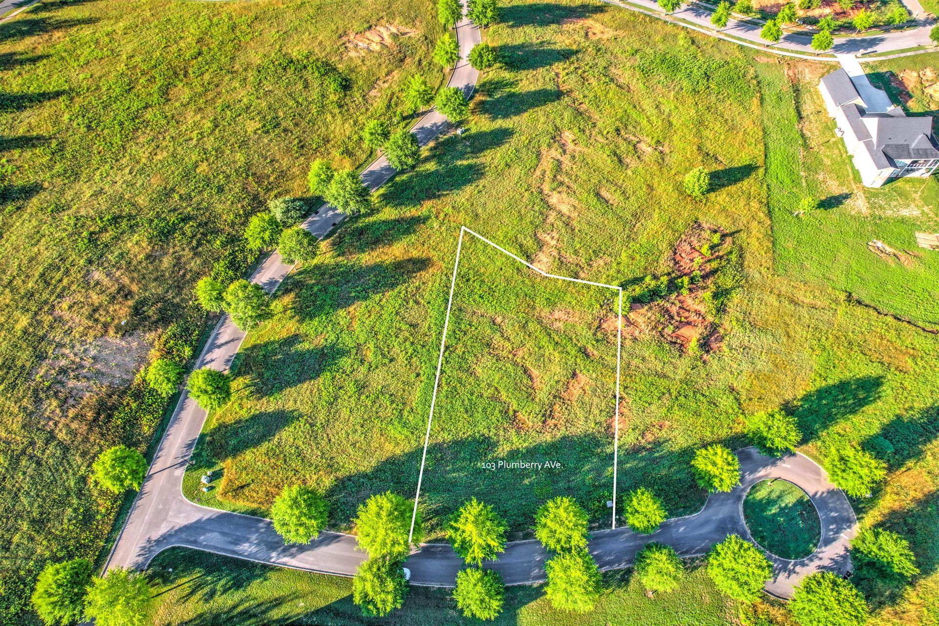 Photo of 103 Plumberry Ave #147, Oak Ridge, TN 37830 (MLS # 1156878)