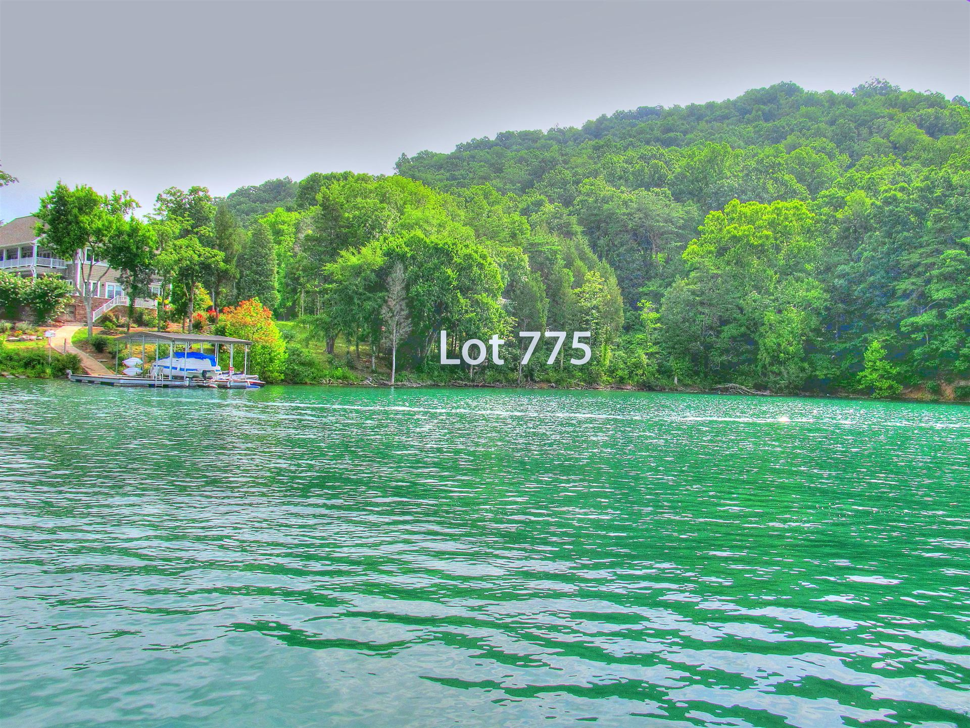 Photo for Lot 775 Russell Brothers Rd, Sharps Chapel, TN 37866 (MLS # 1124881)