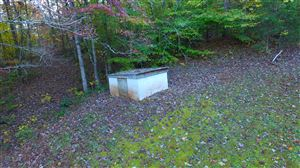 Tiny photo for 189 Lindsey Cemetery Rd, Madisonville, TN 37354 (MLS # 1099882)