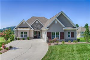 Photo of 375 Rarity Bay Pkwy, Vonore, TN 37885 (MLS # 1093884)