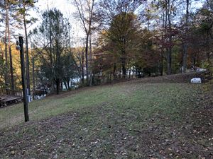 Tiny photo for 181 Lindsey Cemetery Rd, Madisonville, TN 37354 (MLS # 1099887)
