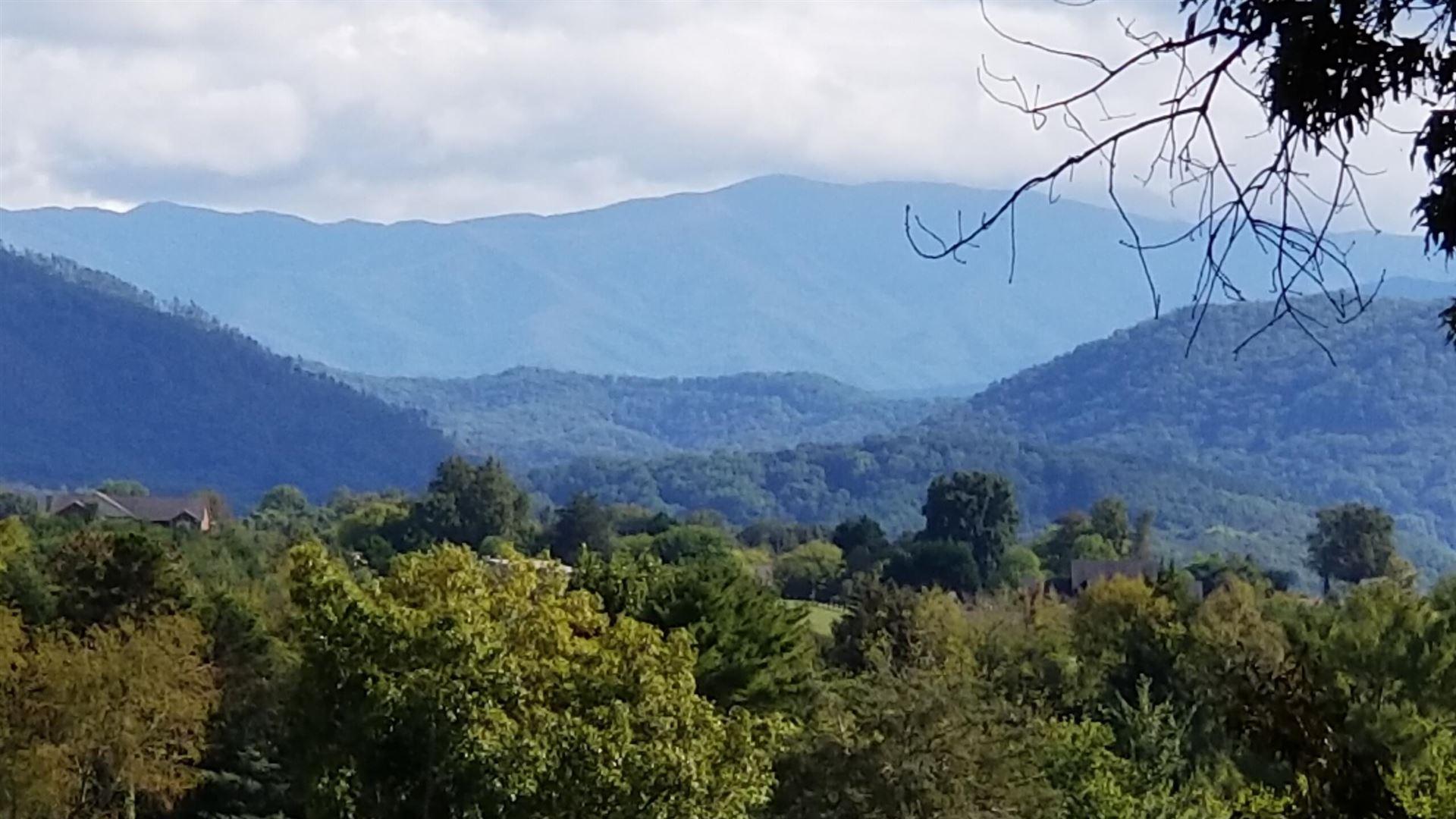 Photo of 129 Wildwood Hills Drive, Maryville, TN 37804 (MLS # 1169887)
