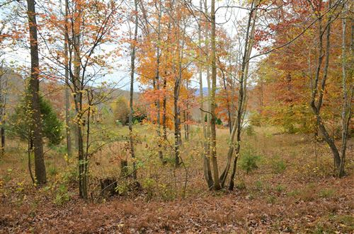 Photo of 0 Fox Ridge Lane, Caryville, TN 37714 (MLS # 1122894)