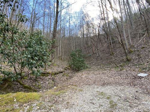 Photo of S Clear Fork Rd Off Rd, Sevierville, TN 37862 (MLS # 1152909)