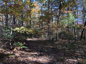 Photo of Hwy 68, Tellico Plains, TN 37385 (MLS # 1059929)