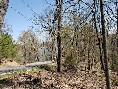 Photo of 856 Wilderness Drive, Mooresburg, TN 37811 (MLS # 1111943)