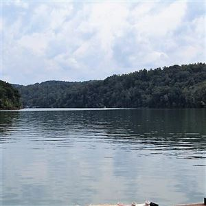 Photo of Lakeside Drive, Jacksboro, TN 37757 (MLS # 1098946)
