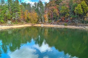 Tiny photo for Mountain Wynd Drive, Butler, TN 37640 (MLS # 1099957)