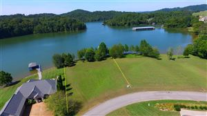 Photo of 345 Pineberry Drive, Vonore, TN 37885 (MLS # 1094960)