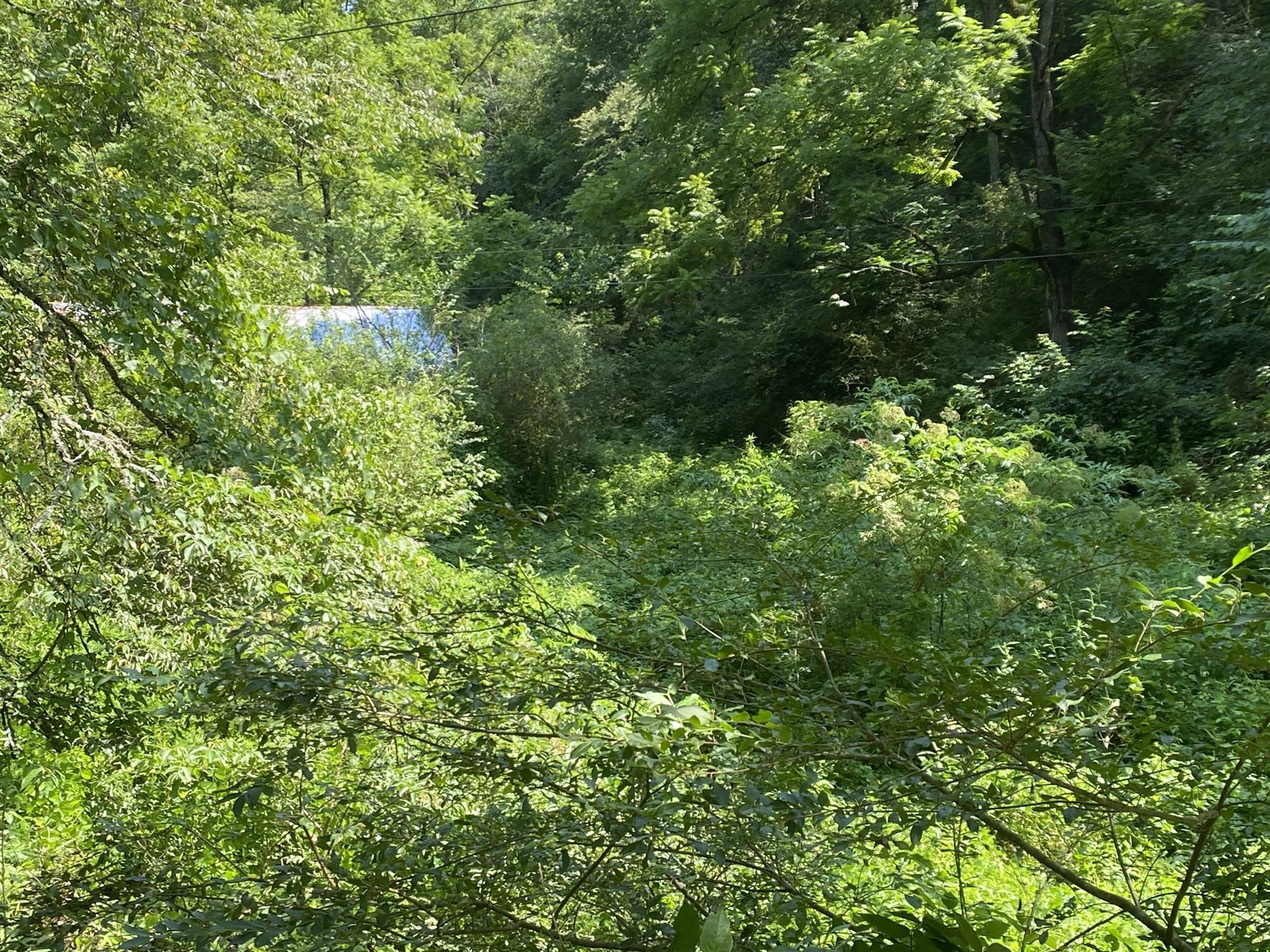 Photo of 3145 Maple Branch, Sevierville, TN 37876 (MLS # 1161967)