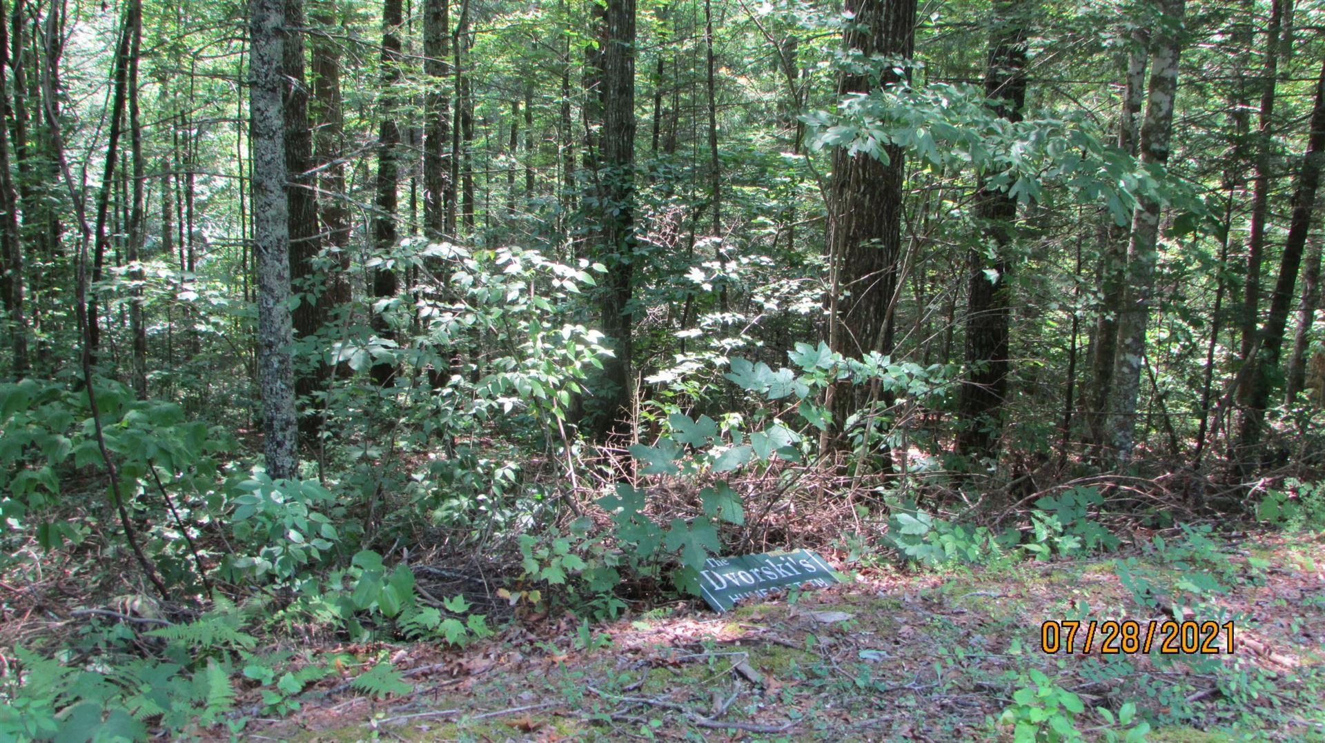 Photo of Bent Tree Lane, Sevierville, TN 37862 (MLS # 1161969)