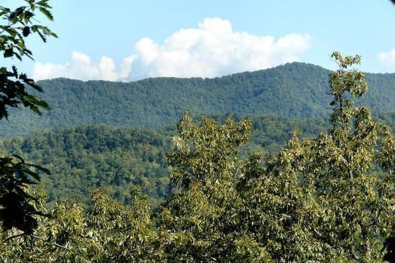Photo of 4714 Riversong Ridge Way, Sevierville, TN 37876 (MLS # 1111990)
