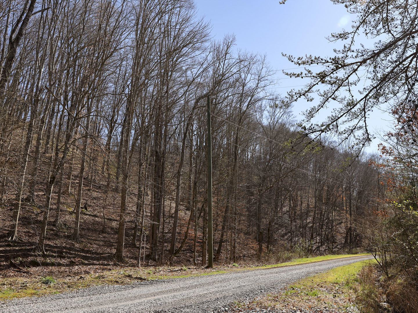 Photo of Cody View Way, Sevierville, TN 37876 (MLS # 1148991)