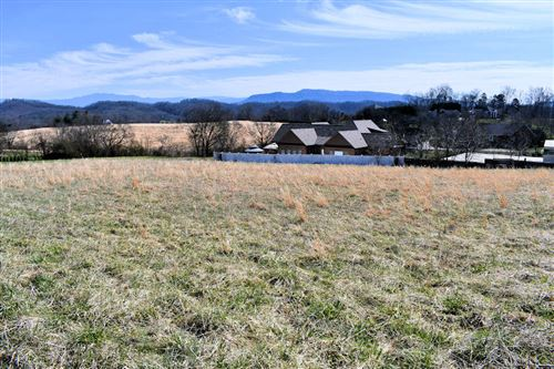 Photo of Lot 9 Instrumental Ave, Sevierville, TN 37876 (MLS # 1144993)