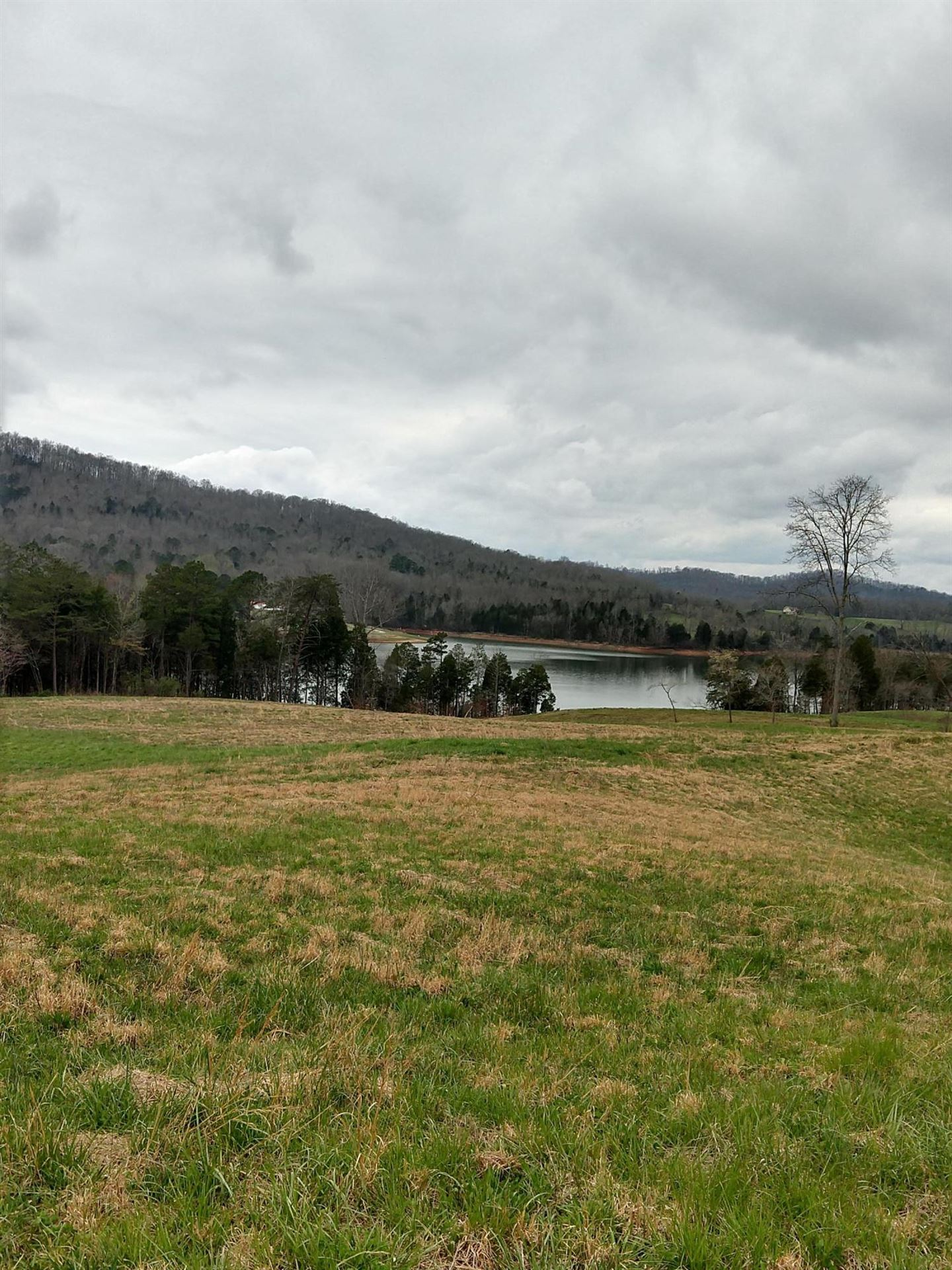Photo for Old Leadmine Bend Rd, Sharps Chapel, TN 37866 (MLS # 1086999)