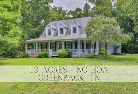 636 Henry Lane, Greenback, TN 37742 - MLS#: 1158884