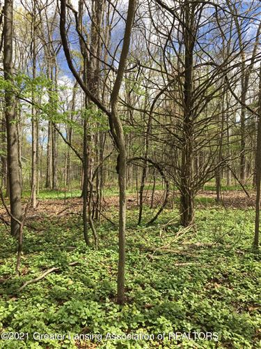 Photo of Lot 3 Chinook Lane, Lyons, MI 48851 (MLS # 255044)
