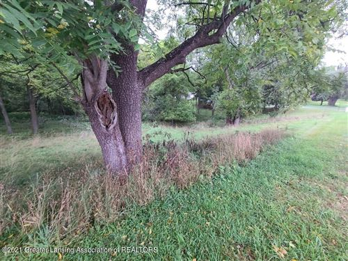 Photo of B Lake Lansing Road, Haslett, MI 48840 (MLS # 259602)