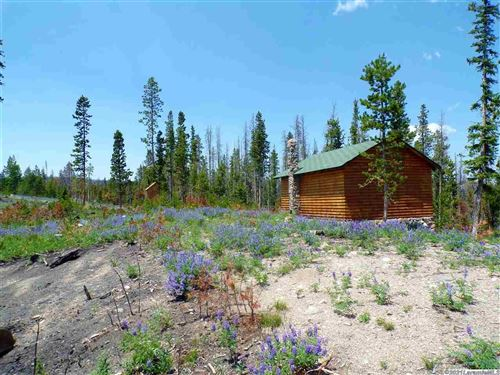 Photo of 60 Pipeline, Albany, WY 82070 (MLS # 210424)