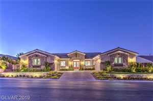 Photo of 9874 SPIDER CREEK Court, Las Vegas, NV 89149 (MLS # 2128699)
