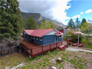 Photo of 3982 ARLBERG Way, Mount Charleston, NV 89124 (MLS # 2049933)