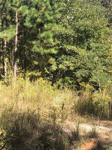 Photo of 2069 COUNTY ROAD 282, FIVE POINTS, AL 36855 (MLS # 148150)