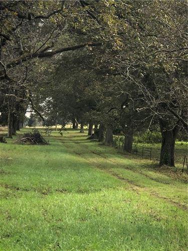 Photo of 4634 COUNTY ROAD 54 E, NOTASULGA, AL 36866 (MLS # 153922)