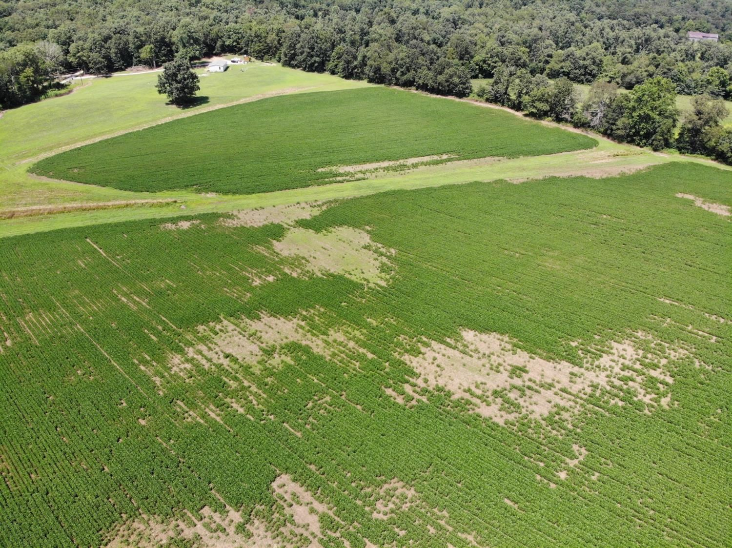 1880 Oil Springs Road, Winchester, KY 40391 - MLS#: 20016055