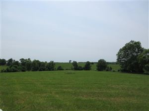 Photo of 2330 Big Stoner Road #1, Winchester, KY 40391 (MLS # 1901137)