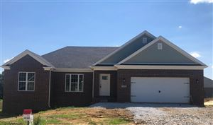 Photo of 179 Fallow Circle Drive, Georgetown, KY 40324 (MLS # 1908304)