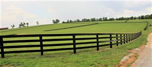 Photo of 1267 Stamping Ground Road #LOT 4, Georgetown, KY 40324 (MLS # 1908361)
