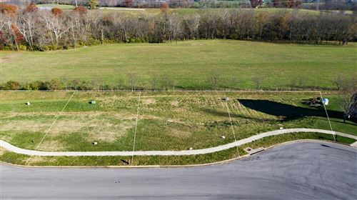 Photo of 176 Shinnecock Hills Drive, Georgetown, KY 40324 (MLS # 20023398)